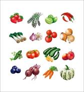 fruit and veg bag